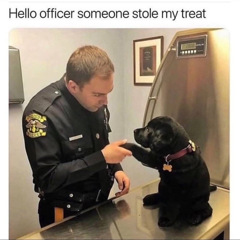 wholesome meme of an officer shaking a dogs paw