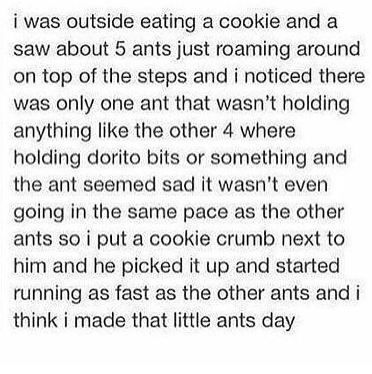 wholesome meme of a person who gave an ant a crumb because it was not holding anything compared to the other ants