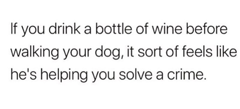 Text - If you drink a bottle of wine before walking your dog, it sort of feels like he's helping you solve a crime.