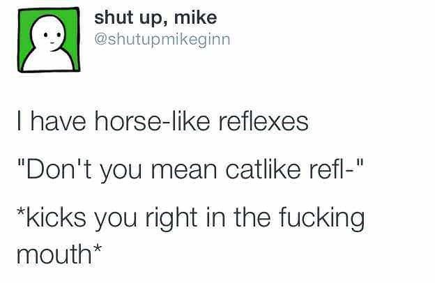 "Text - shut up, mike @shutupmikeginn I have horse-like reflexes ""Don't you mean catlike refl-"" kicks you right in the fucking mouth*"