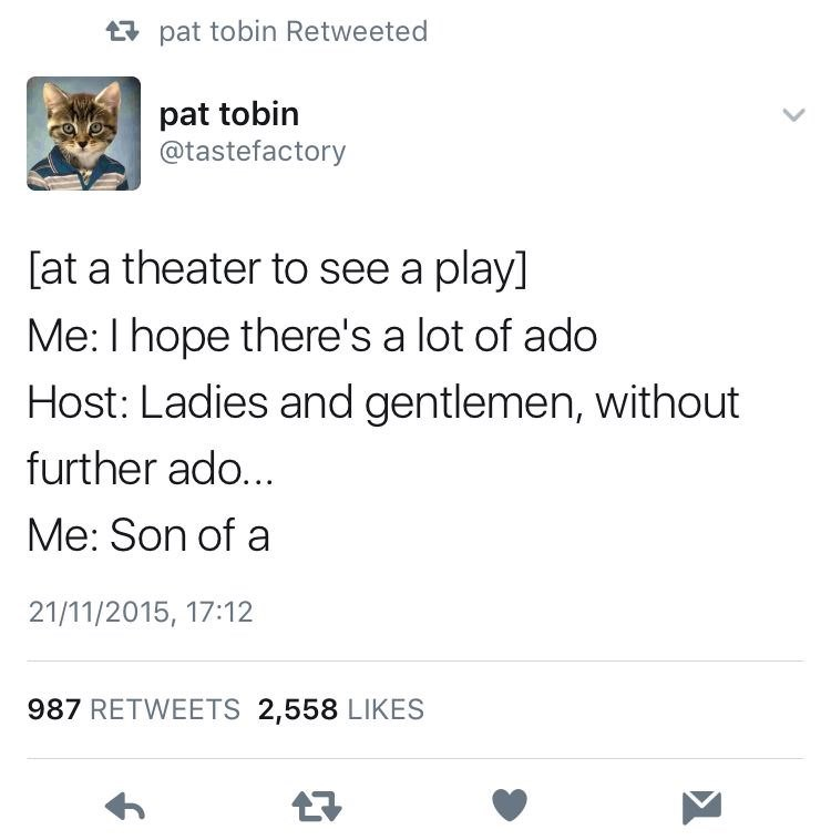 Text - t pat tobin Retweeted pat tobin @tastefactory [at a theater to see a play] Me: I hope there's a lot of ado Host: Ladies and gentlemen, without further ado... Me: Son of a 21/11/2015, 17:12 987 RETWEETS 2,558 LIKES