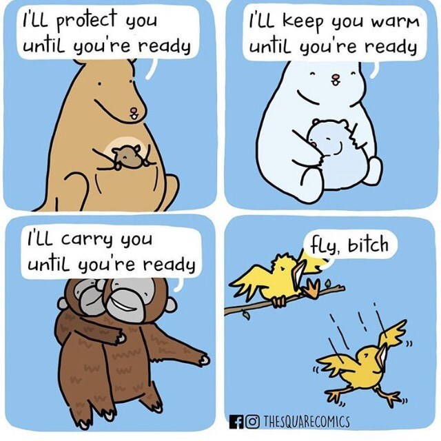 Cartoon - rLL protect you until you're ready TlL keep you warm until you're ready TLL carry you fly, bitch until you're ready ww fOTHESQUARECOMICS