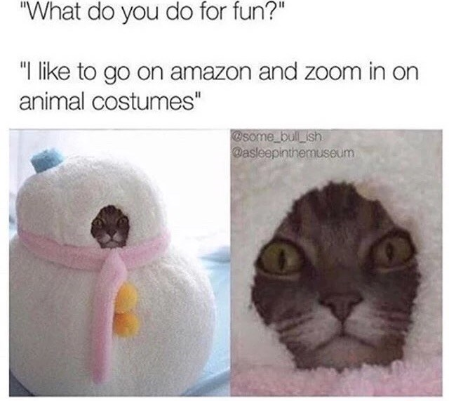 """Nose - """"What do you do for fun?"""" """"I like to go on amazon and zoom in on animal costumes"""" @some bul ish @asleepinthemuseum"""