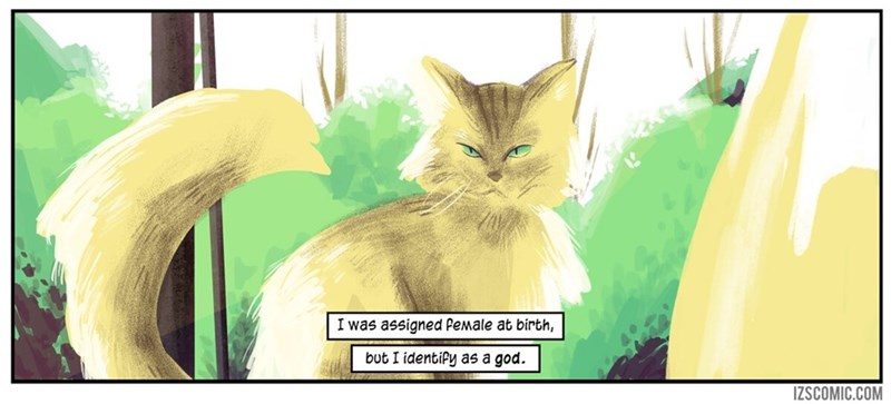 Cat - I was assigned Pemale at birth, but I identipy as a god. IZSCOMIC.COM