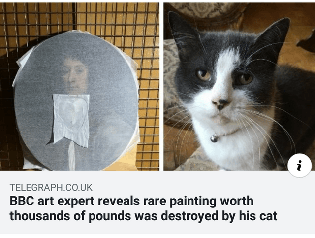 Cat - i TELEGRAPH.CO.UK BBC art expert reveals rare painting worth thousands of pounds was destroyed by his cat
