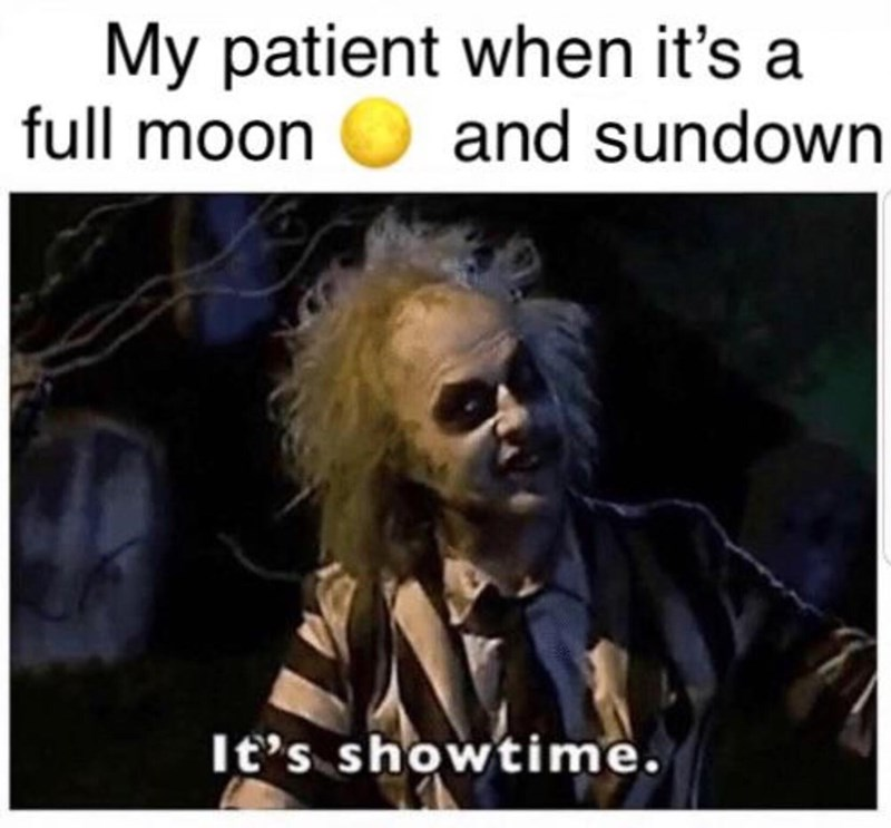 Photo caption - My patient when it's a full moon and sundown It's showtime.