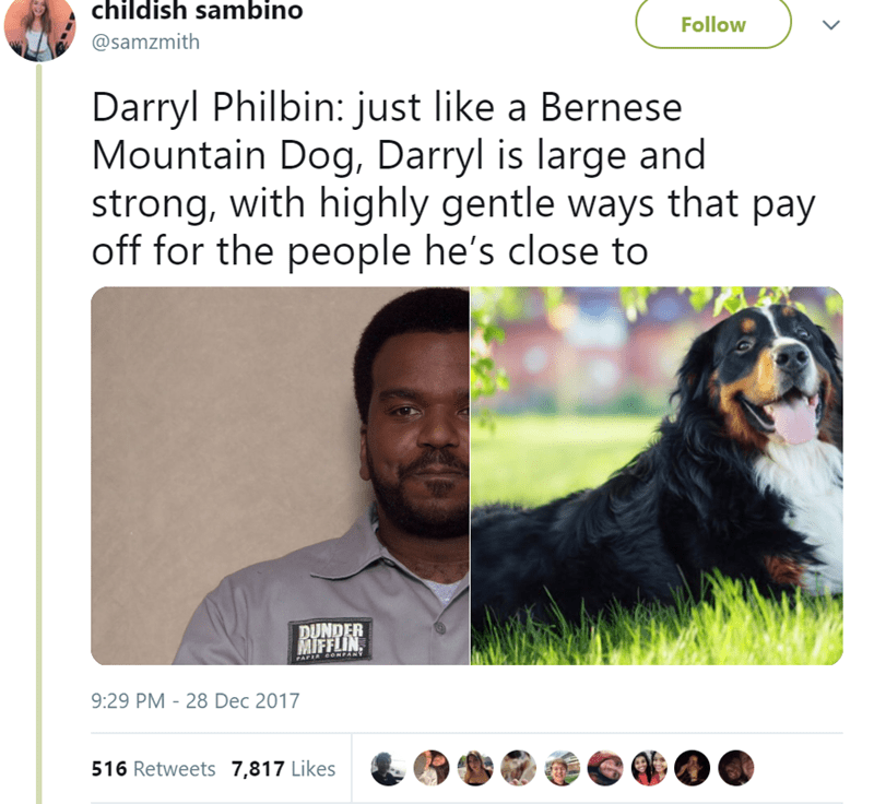 Dog - childish sambino Follow @samzmith Darryl Philbin: just like a Bernese Mountain Dog, Darryl is large and strong, with highly gentle ways that pay off for the people he's close to DUNDER MIFFLIN PAPIR CONPANY 9:29 PM 28 Dec 2017 516 Retweets 7,817 Likes