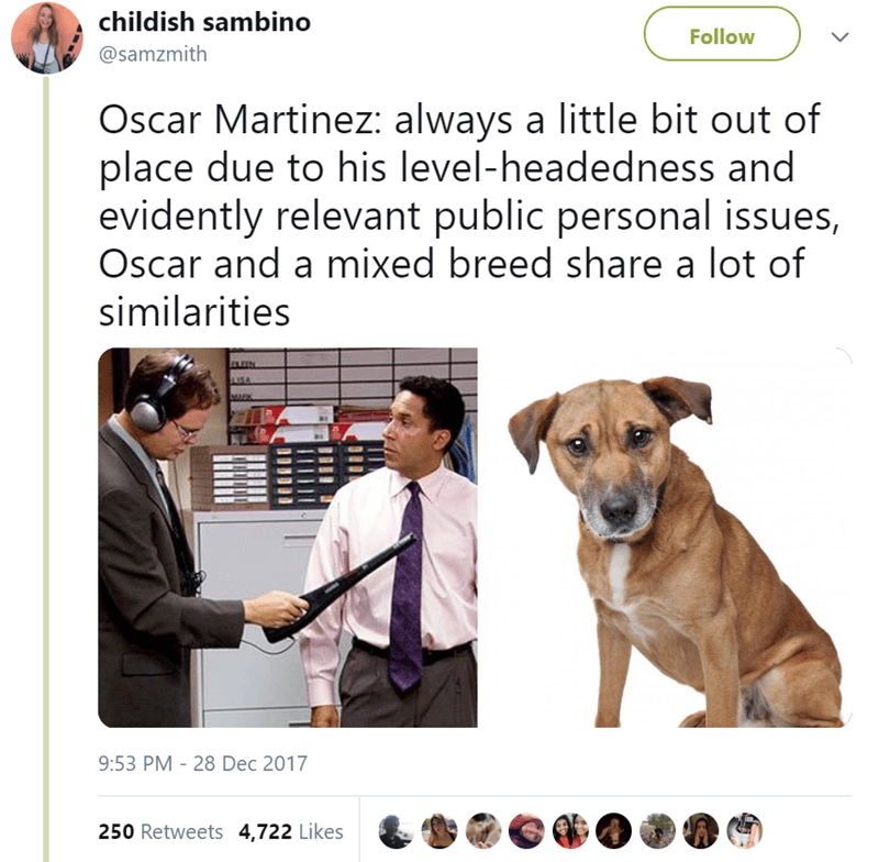 Dog breed - childish sambino Follow @samzmith Oscar Martinez: always a little bit out of place due to his level-headedness and evidently relevant public personal issues, Oscar and a mixed breed share a lot of similarities USA 9:53 PM - 28 Dec 2017 250 Retweets 4,722 Likes