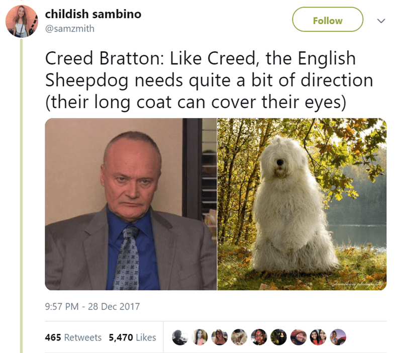 Adaptation - childish sambino Follow @samzmith Creed Bratton: Like Creed, the English Sheepdog needs quite a bit of direction (their long coat can cover their eyes) 9:57 PM 28 Dec 2017 465 Retweets 5,470 Likes