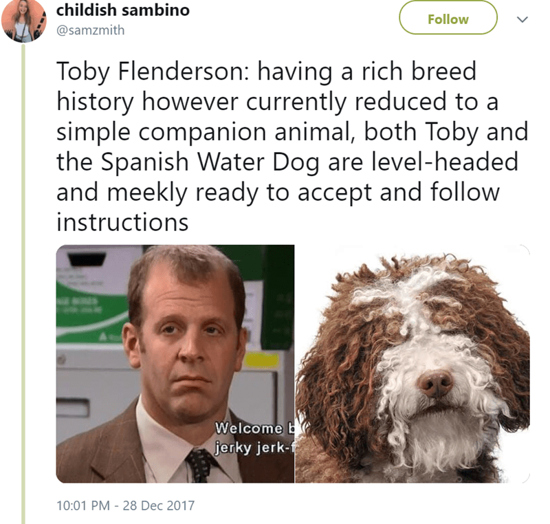 Dog - childish sambino Follow @samzmith Toby Flenderson: having a rich breed history however currently reduced to a simple companion animal, both Toby and the Spanish Water Dog are level-headed and meekly ready to accept and follow instructions Welcome jerky jerk-f 10:01 PM 28 Dec 2017