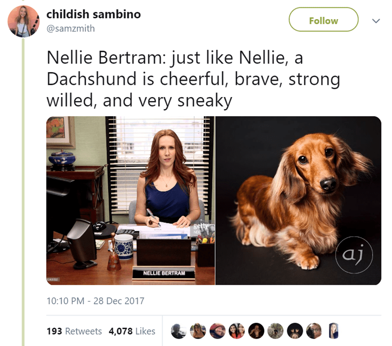 Canidae - childish sambino Follow @samzmith Nellie Bertram: just like Nellie, a Dachshund is cheerful, brave, strong willed, and very sneaky getty NEC aj NELLIE BERTRAM 063002 10:10 PM 28 Dec 2017 193 Retweets 4,078 Likes