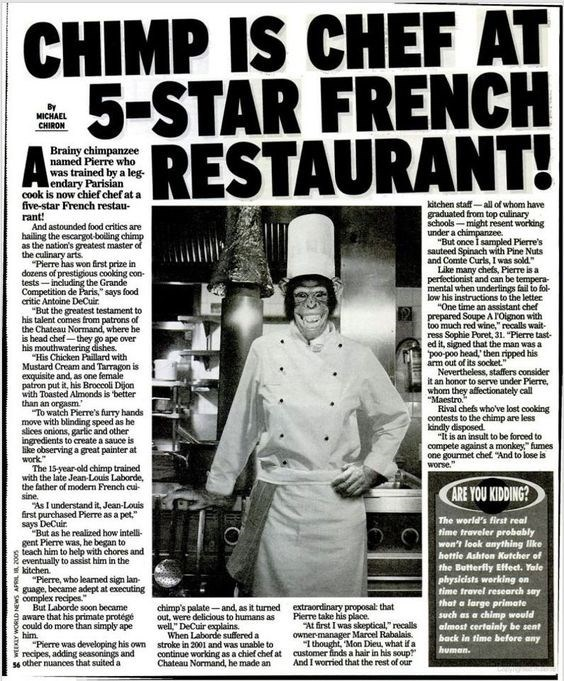 """Newspaper - CHIMP IS CHEF AT 5-STAR FRENCH RESTAURANT! MICHAEL CHIRON Brainy chimpanzee named Pierre who was trained by a leg- endary Parisian cook is now chief chef at a five-star French restau rant! And astounded food critics are hailing the escargot-boiling chimp as the nation's greatest master of the culinary arts """"Pierre has won first prize in dozens of prestigious cooling con tests-including the Grande Competition de Paris,"""" says food critic Antoine DeCuir """"But the greatest testament to hi"""
