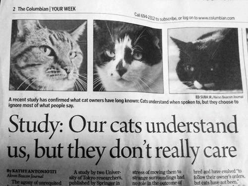 """Cat - 2 The Columbian YOUR WEEK Cal 694-2312 to subscribe, or log on to www.columbian.com ED SUBA Ak Beacon ouma A recent study has confirmed what cat owners have long known: Cats understand when spoken to, but they choose to ignore most of what people say. Study: Our cats understand us, but they don't really care bred and have evolved """"to follow their owner's orders but cats have not been By KATHY ANTONIOTTI Akrm Boace Jornal stress of moving them to strange surroundings had no role in the outc"""