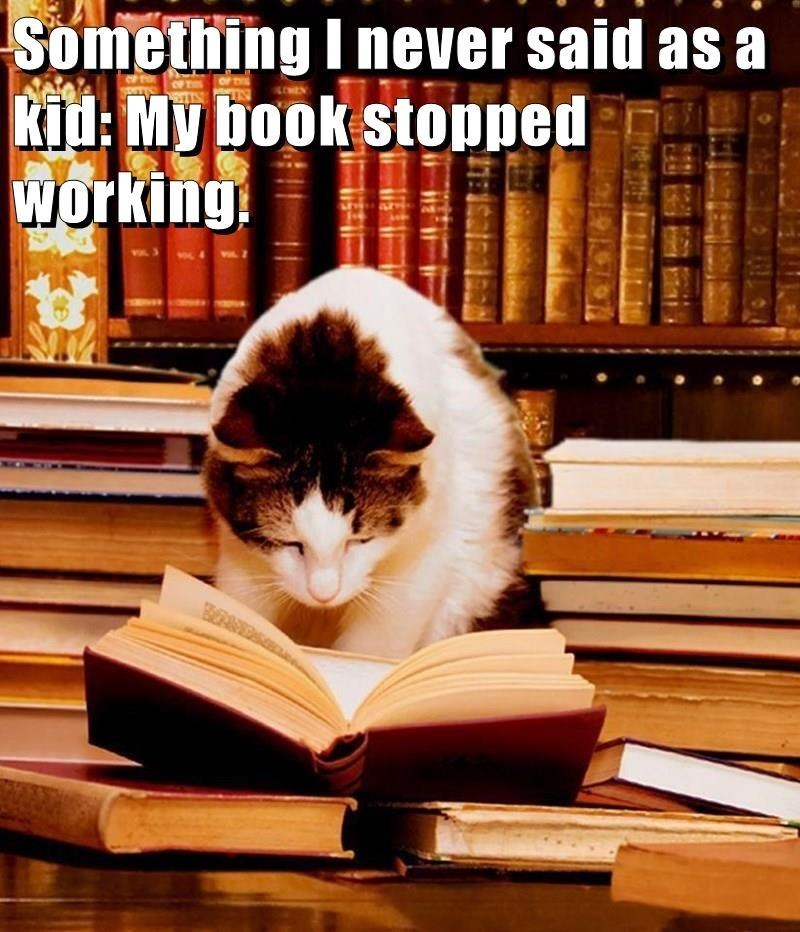 funny cat looking at an open book while surrounded by lots of books