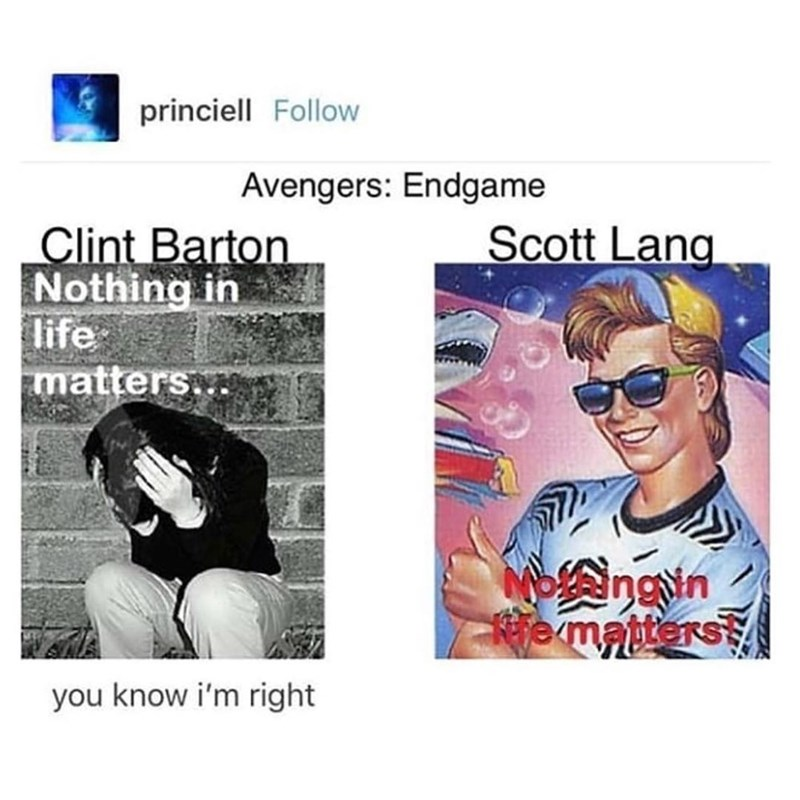 marvel meme - Text - princiell Follow Avengers: Endgame Scott Lang Clint Barton Nothing in life matters ngn Kie matters RS you know i'm right
