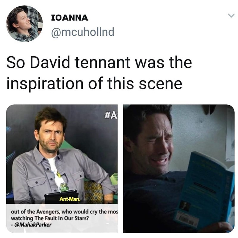 marvel meme - Adaptation - IOANNA @mcuhollnd So David tennant was the inspiration of this scene #A Ant-Man. out of the Avengers, who would cry the mos watching The Fault In Our Stars? @MahakParker -