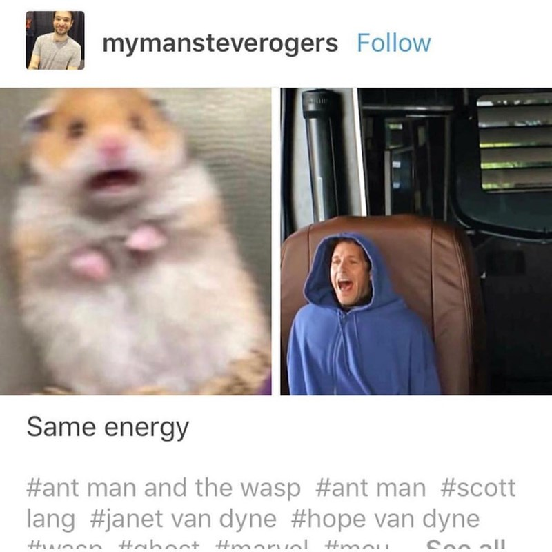 marvel meme - Facial expression - mymansteverogers Follow Same energy #ant man and the wasp #ant man #scott lang #janet van dyne #hope van dyne hant marnl Hma So ll