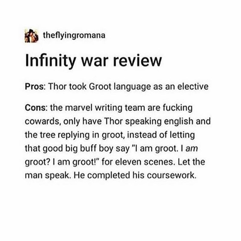 "marvel meme - Text - theflyingromana Infinity war review Pros: Thor took Groot language as an elective Cons: the marvel writing team are fucking cowards, only have Thor speaking english and the tree replying in groot, instead of letting that good big buff boy say ""I am groot. I am groot? I am groot!"" for eleven scenes. Let the man speak. He completed his coursework."
