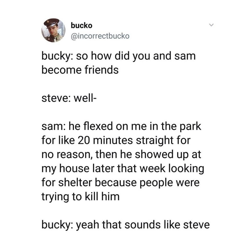 marvel meme - Text - bucko @incorrectbucko bucky: so how did you and sam become friends steve: well sam: he flexed on me in the park for like 20 minutes straight for no reason, then he showed up at my house later that week looking for shelter because people were trying to kill him bucky: yeah that sounds like steve