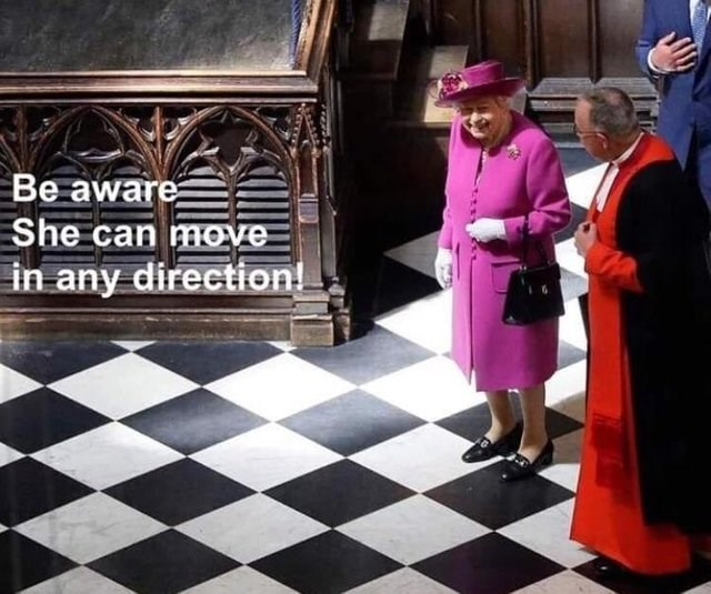 literal joke - Games - Be aware She can move in any direction!