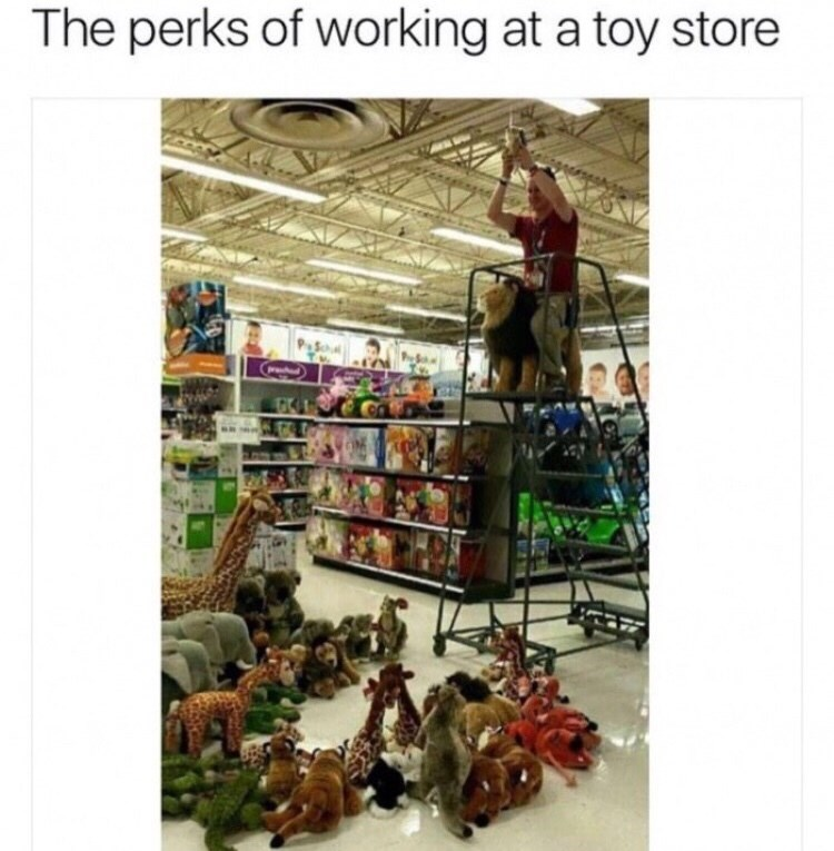 "Caption that reads, ""The perks of working at a toy store"" above a pic of a guy standing on a ladder holding up a stuffed animal like in the Lion King"