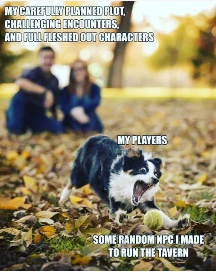 Canidae - MY CAREFULLY PLANNED PLOT CHALLENGING ENCOUNTERS AND FULL FLESHEDOUT CHARACTERS MY PLAYERS SOMERANDOM NPCIMADE TO RUN THE TAVERN