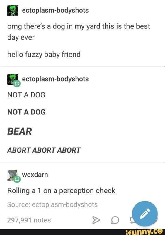 Text - ectoplasm-bodyshots omg there's a dog in my yard this is the best day ever hello fuzzy baby friend ectoplasm-bodyshots NOT A DOG NOT A DOG BEAR ABORT ABORT ABORT wexdarn Rolling a 1 on a perception check Source: ectoplasm-bodyshots 297,991 notes ifunny.co