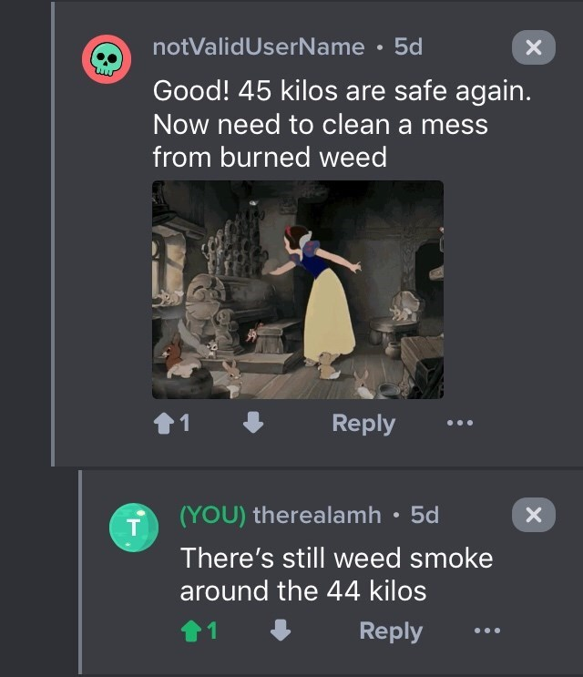 drug bust - Text - notValidUserName 5d Good! 45 kilos are safe again. Now need to clean a mess from burned weed Reply 1 (YOU) therealamh 5d T There's still weed smoke around the 44 kilos 1 Reply X