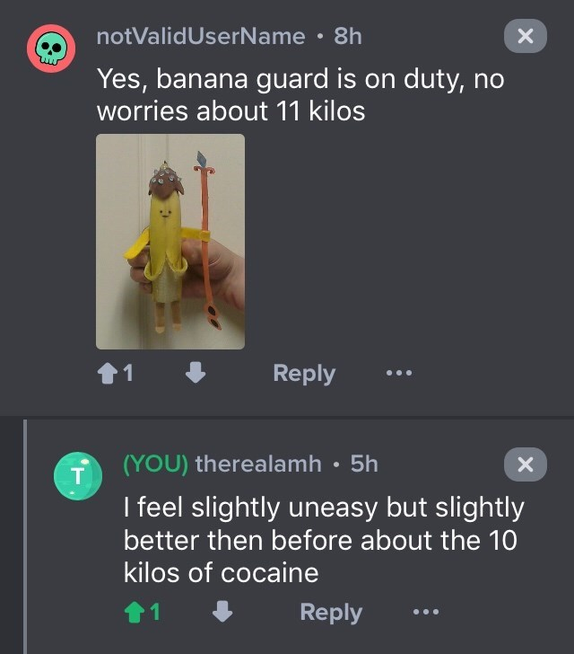 drug bust - Text - notValidUserName 8h Yes, banana guard is on duty, no worries about 11 kilos t1 Reply (YOU) therealamh 5h T I feel slightly uneasy but slightly better then before about the 10 kilos of cocaine Reply X X