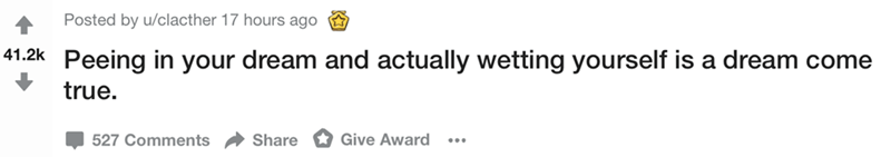 Text - Posted by u/clacther 17 hours ago 41.2k Peeing in your dream and actually wetting yourself is a dream come true. Give Award 527 Comments Share