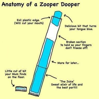 Text - Anatomy of a Zooper Dooper Evil plastic edge. (Will cut your mouth) Delicious bit that turns your tongue blue. Broken section to hold so your fingers don't freeze ofA More for later... Little cut of bit your Mum finds on the floor The Juice Sweet elixir of life and the best part!!