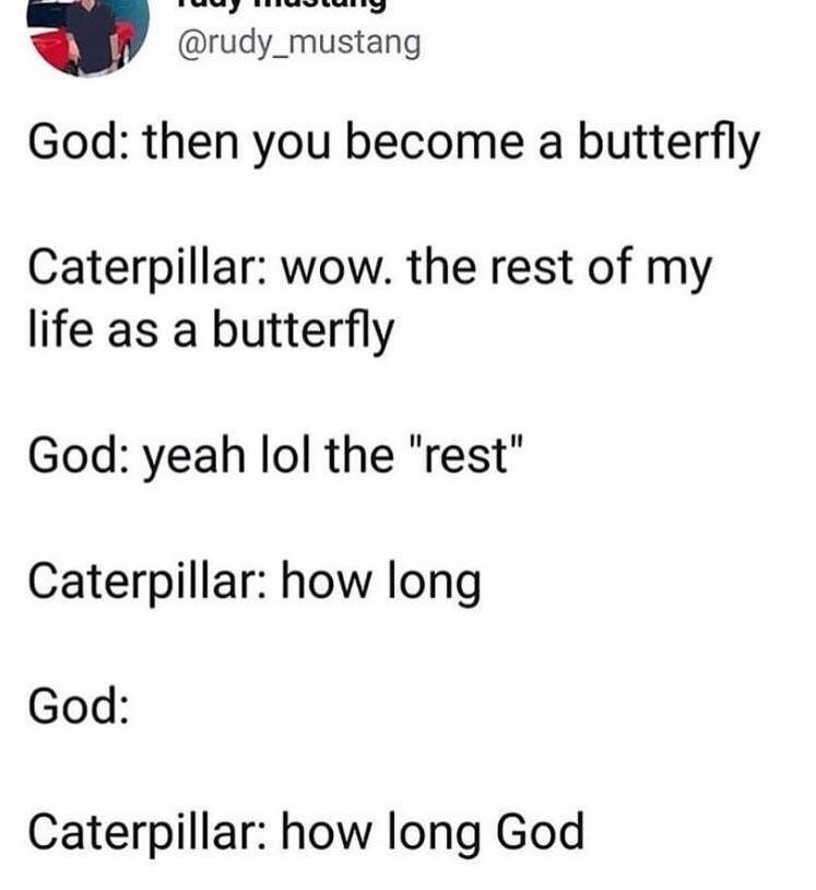"""christian meme - Text - @rudy_mustang God: then you become a butterfly Caterpillar: wow. the rest of my life as a butterfly God: yeah lol the """"rest"""" Caterpillar: how long God: Caterpillar: how long God"""