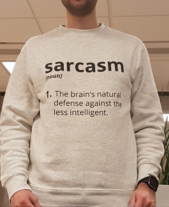 Clothing - sarcasm (noun) 1. The brain's naturali defense against the less intelligent.
