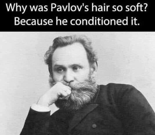 pointless meme about Pavlov conditioning his hair