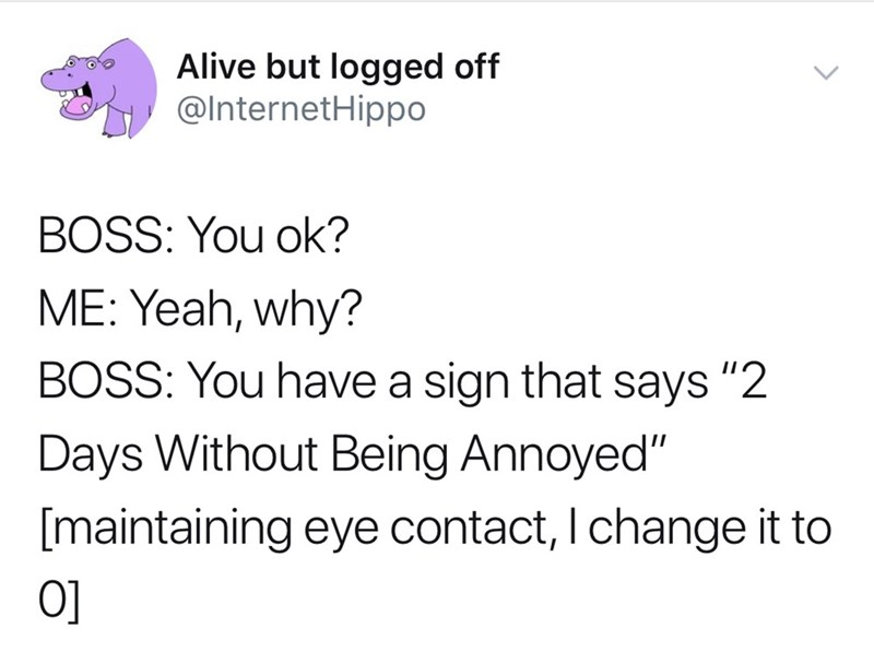 "Text - Alive but logged off @InternetHippo BOSS: You ok? ME: Yeah, why? BOSS: You have a sign that says ""2 Days Without Being Annoyed"" [maintaining eye contact, I change it to O]"