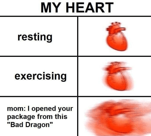 "meme - Organism - MY HEART resting exercising mom: I opened your package from this ""Bad Dragon"""