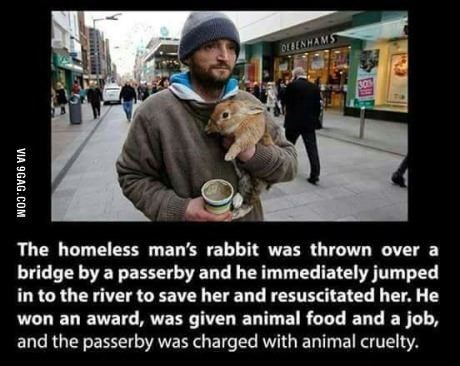 wholesome meme - Photograph - DEBENHAMS The homeless man's rabbit was thrown over a bridge by a passerby and he immediately jumped in to the river to save her and resuscitated her. He won an award, was given animal food and a job, and the passerby was charged with animal cruelty. VIA 9GAG.COM