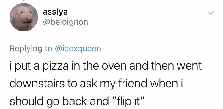 "Text - asslya @beloignon Replying to @icexqueen i put a pizza in the oven and then went downstairs to ask my friend when i should go back and ""flip it"""