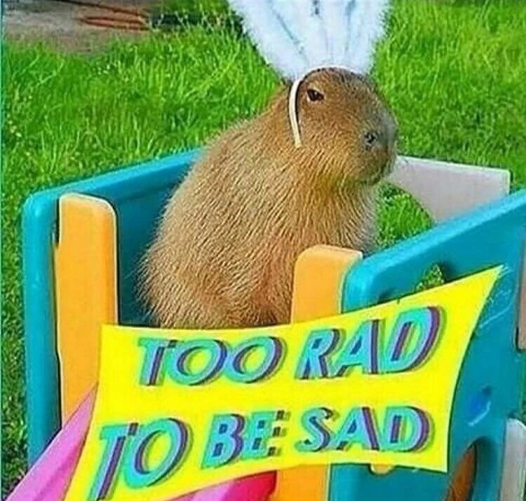 wholesome meme of a bunny that is wearing a headband