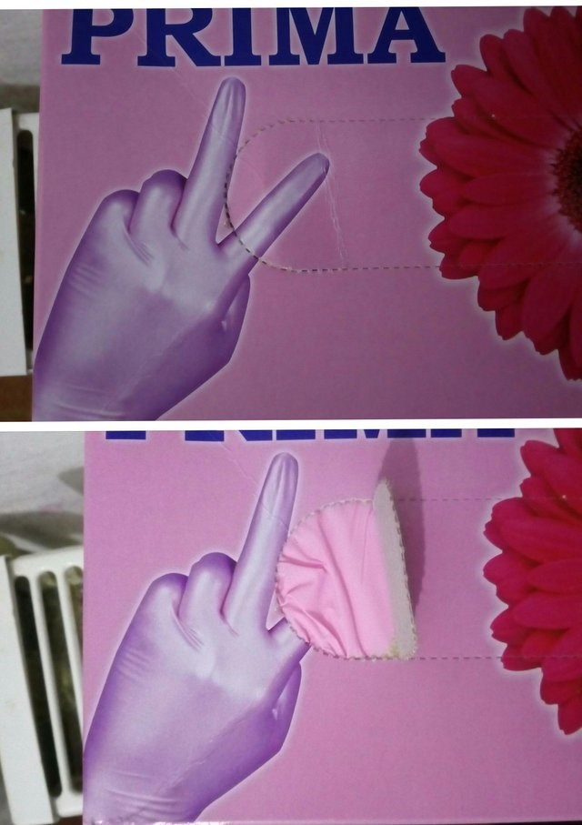 Pink - PRIMA