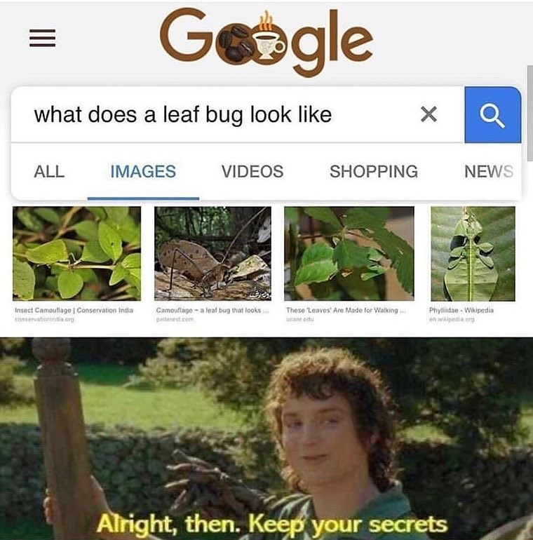 Funny meme about frodo baggins, leaf bugs, all right then, keep your secrets, lord of the rings.