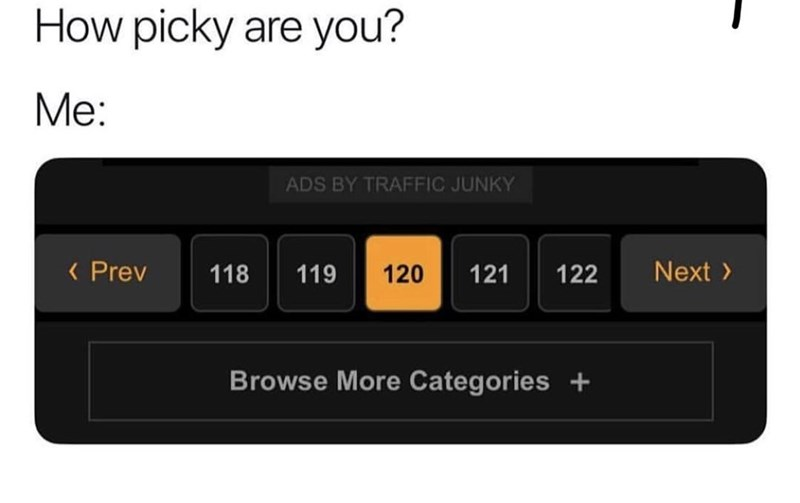 Text - How picky are you? Me: ADS BY TRAFFIC JUNKY K Prev Next 118 120 119 121 122 Browse More Categories +