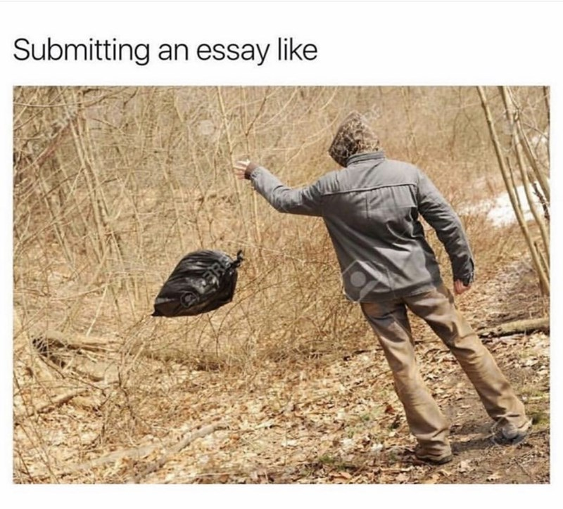 Adaptation - Submitting an essay like