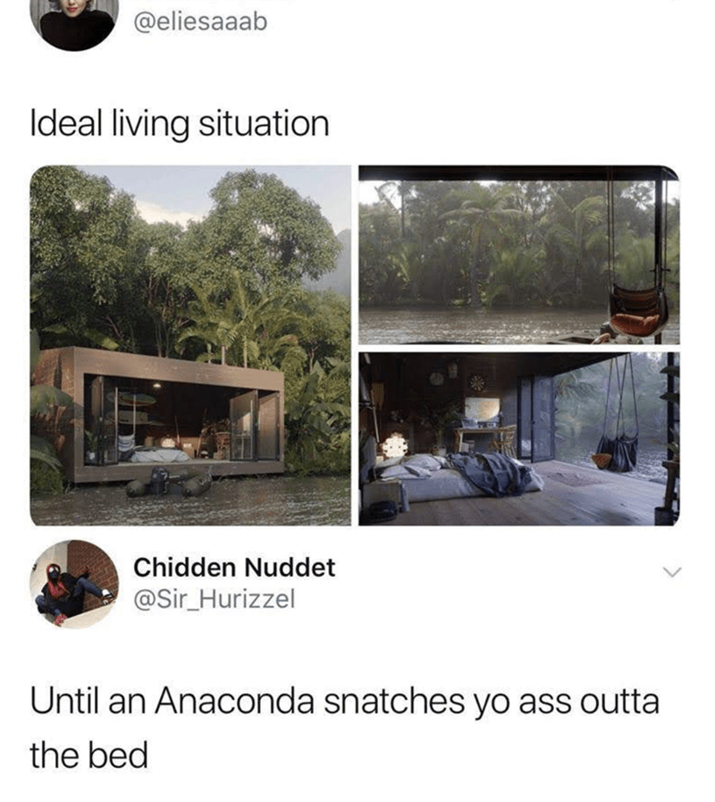 Property - @eliesaaab Ideal living situation Chidden Nuddet @Sir_Hurizzel Until an Anaconda snatches yo ass outta the bed