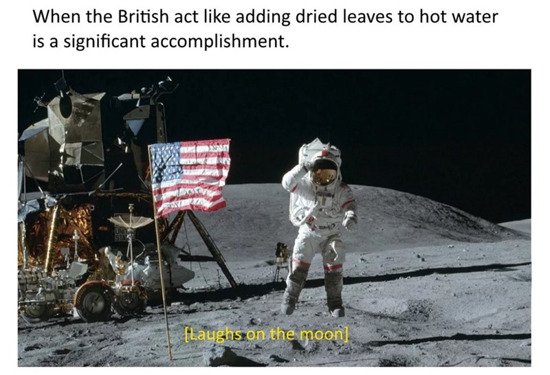 Astronaut - When the British act like adding dried leaves to hot water is a significant accomplishment. fLaughs on themoon