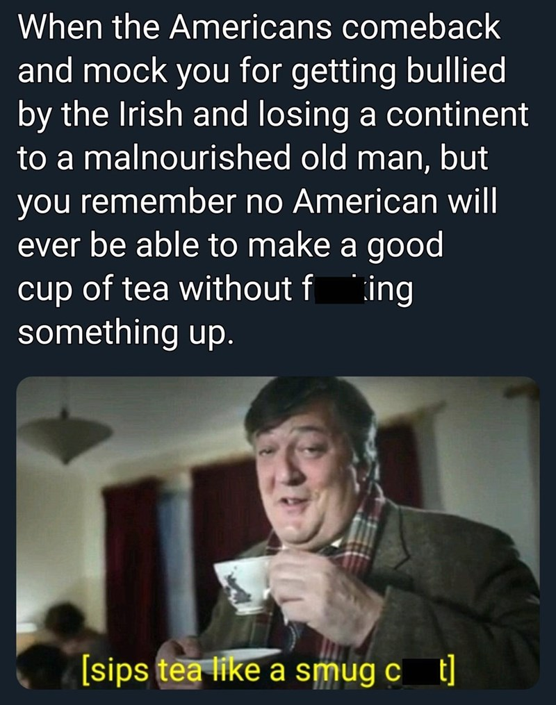 Facial expression - When the Americans comeback and mock you for getting bullied by the Irish and losing a continent to a malnourished old man, but you remember no American will ever be able to make a good cup of tea without f ing something up. [sips tea like a smug c t