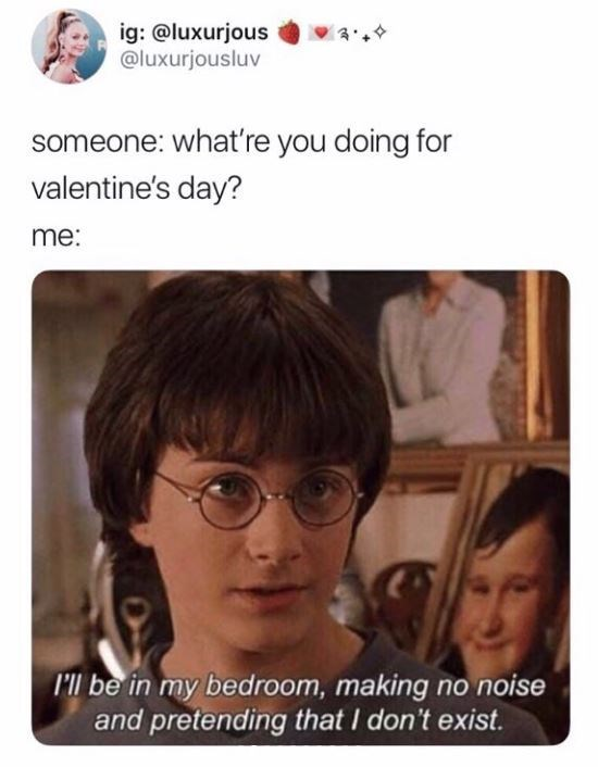 """Caption that reads, """"Someone: what're you doing for Valentine's Day? Me: ..."""" above a still of Harry Potter saying, """"I'll be in my bedroom, making no noise and pretending that I don't exist"""""""
