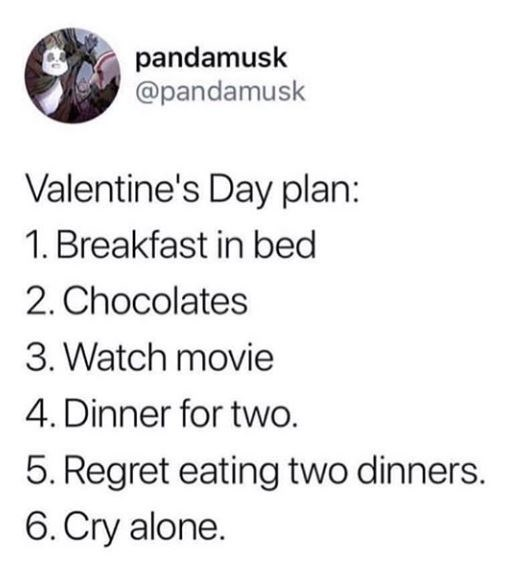 Text - pandamusk @pandamusk Valentine's Day plan: 1. Breakfast in bed 2. Chocolates 3. Watch movie 4. Dinner for two. 5. Regret eating two dinners. 6. Cry alone.