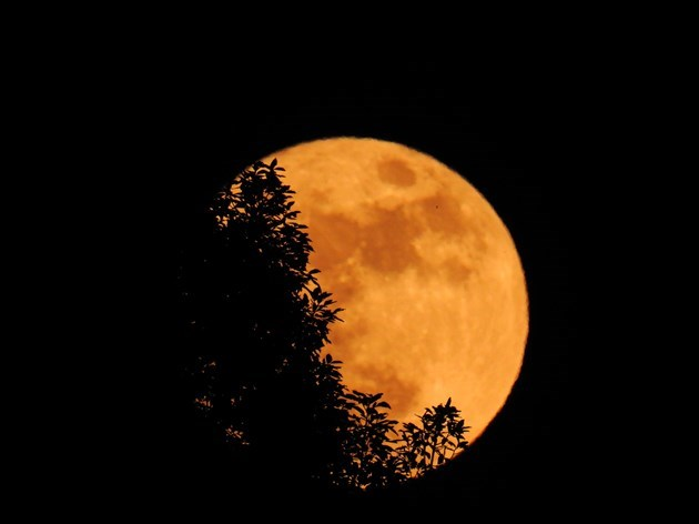 photos of friday 13th harvest moon