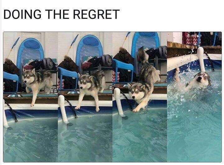Swimming pool - DOING THE REGRET